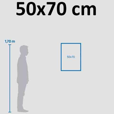 Banner 50×70 cm