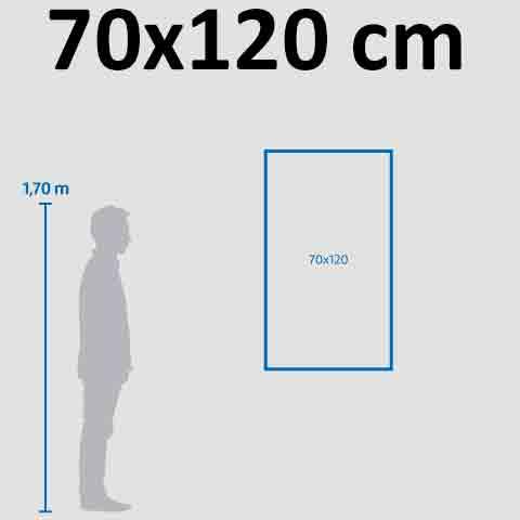 Banner 70×120 cm